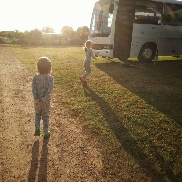 Morning rituals. These two like to start their day with a little walk outside. They wander around like two old men, inspecting the new day, watching the bird life and taking in their surroundings. We're camped at Pottsville North (thanks to @tweedcoastholidayparks) which is perfect for their morning walk. We're on a powered site (suitable for buses) in a large grassy field, with plenty of open space for the boys to roam. It's quiet and peaceful, except for the distant roar of ocean waves and the hauntingly beautiful call of the park's resident bush stone curlews.  #tweedcoast #pottsville #busconversion #buslife #bus #tinyhouse #skoolie #skoolieconversion #vanlife #offgrid #busbuild #rvlife #busnut #busrollwithit #livesmaller #nomad #happycamper #wander #wanderlust #homeiswhereyouparkit #ontheroad #travelwithkids #caravanpark #holiday